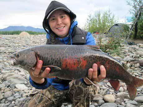 рыбалка в верхоянске