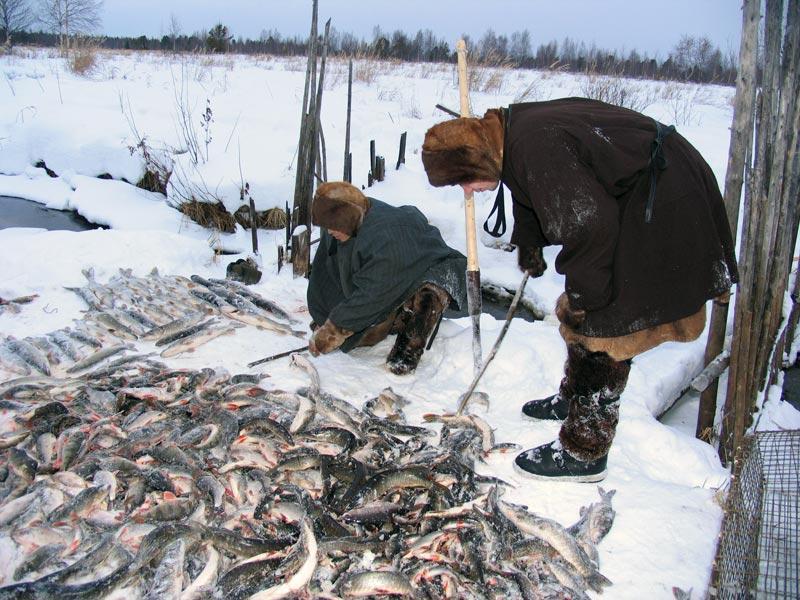 рыбалка на востоке сибири видео